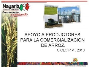 APOYO A PRODUCTORES PARA LA COMERCIALIZACION DE ARROZ
