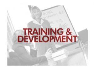 Learning Talent Development Learning Development Learning By the