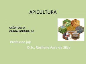 APICULTURA CRDITOS 04 CARGA HORRIA 60 Professor a