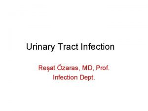 Urinary Tract Infection Reat zaras MD Prof Infection