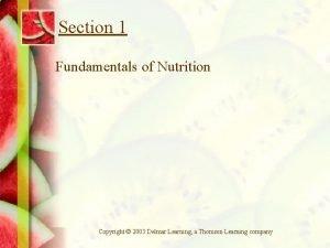 Section 1 Fundamentals of Nutrition Copyright 2003 Delmar