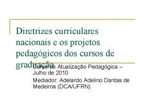 Diretrizes curriculares nacionais e os projetos pedaggicos dos