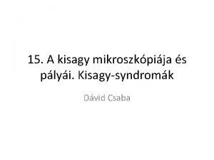 15 A kisagy mikroszkpija s plyi Kisagysyndromk Dvid
