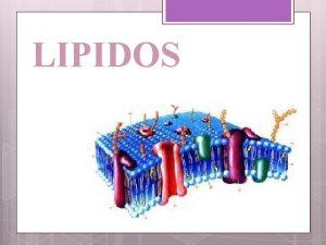 LIPIDOS Los Lpidos estn formados por formadas por