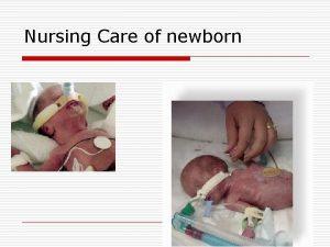 Nursing Care of newborn Objectives o Discuss priorities