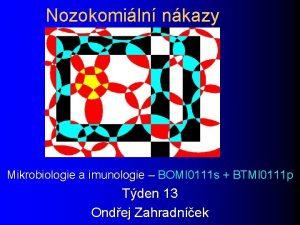Nozokomiln nkazy Mikrobiologie a imunologie BOMI 0111 s