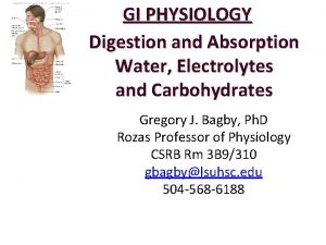 GI PHYSIOLOGY Digestion and Absorption Water Electrolytes and