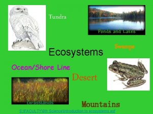 Tundra Ecosystems OceanShore Line Swamps Desert Mountains S
