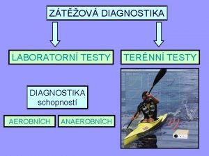 ZTOV DIAGNOSTIKA LABORATORN TESTY DIAGNOSTIKA schopnost AEROBNCH ANAEROBNCH