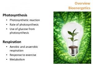 Overview Bioenergetics Photosynthesis Photosynthetic reaction Rate of photosynthesis