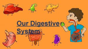 Our Digestive System What is a digestive system