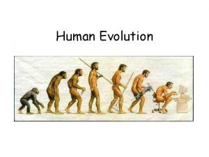 Human Evolution Anthropology the study of humans their