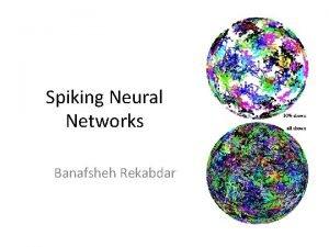 Spiking Neural Networks Banafsheh Rekabdar Biological Neuron The