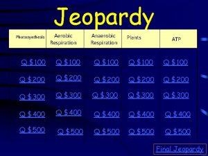 Jeopardy Photosynthesis Aerobic Respiration Anaerobic Respiration Plants ATP