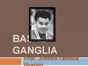 BASAL GANGLIA Prof Ahmed Fathalla OBJECTIVES q q