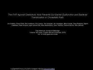 The FXR Agonist Obeticholic Acid Prevents Gut Barrier