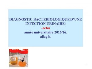 DIAGNOSTIC BACTERIOLOGIQUE DUNE INFECTION URINAIRE ecbu anne universitaire