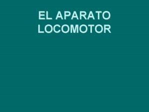 EL APARATO LOCOMOTOR El aparato locomotor Todos los