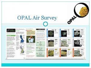 OPAL Air Survey What is air Air is