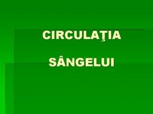 CIRCULAIA S NGELUI deplasarea sngelui n arborele circulator