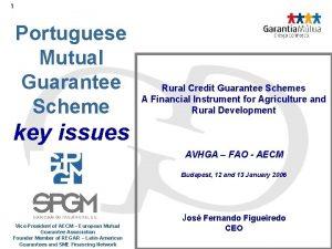 1 Portuguese Mutual Guarantee Scheme Rural Credit Guarantee