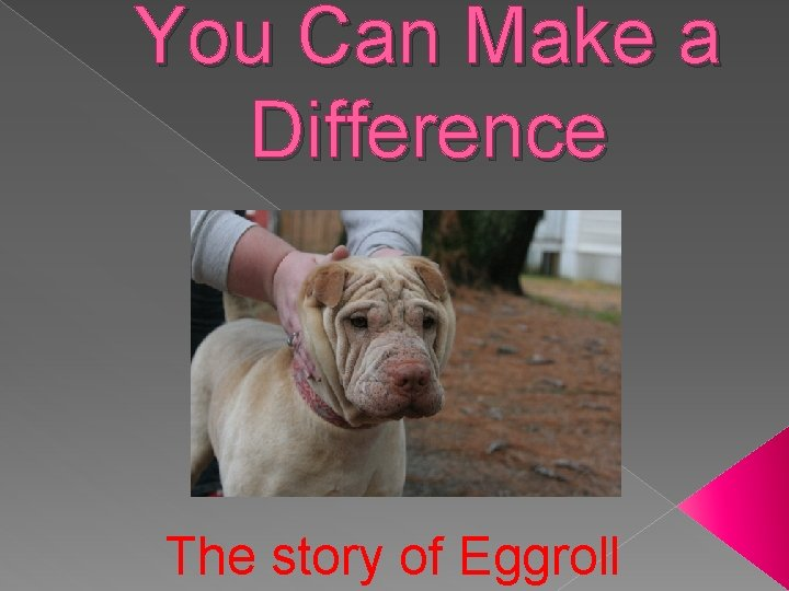 You Can Make a Difference The story of