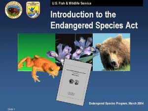 U S Fish Wildlife Service Introduction to the