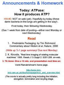Announcements Homework Today ATPase How it produces ATP