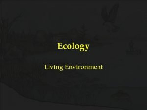 Ecology Living Environment Ecology Ecology The study of