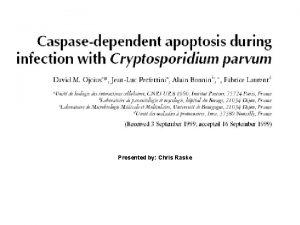 Presented by Chris Raske Cryptosporidium Parvum A protozoan