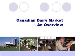 Canadian Dairy Market An Overview Global Dairy World