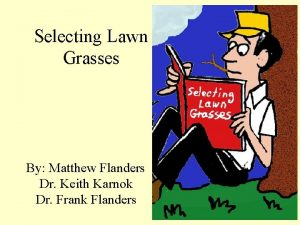 Selecting Lawn Grasses By Matthew Flanders Dr Keith