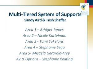 MultiTiered System of Supports Sandy Aird Trish Shaffer