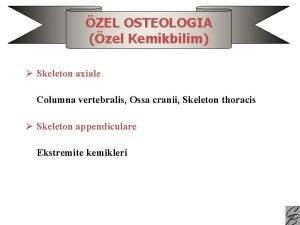 ZEL OSTEOLOGIA zel Kemikbilim Skeleton axiale Columna vertebralis