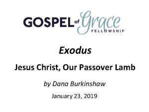 Exodus Jesus Christ Our Passover Lamb by Dana