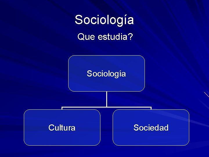 Sociologa Que estudia Sociologa Cultura Sociedad Sociedad Como