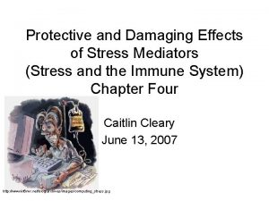 Protective and Damaging Effects of Stress Mediators Stress