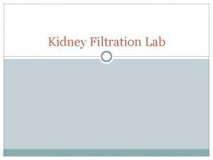Kidney Filtration Lab Objectives Determine how kidneys function