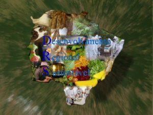 Desenvolvimento R egional S ustentvel Desenvolvimento Regional Sustentvel