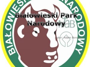 Biaowieski Park Narodowy Autor Adam Boroniec Biaowieski Park