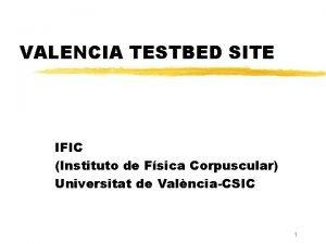 VALENCIA TESTBED SITE IFIC Instituto de Fsica Corpuscular