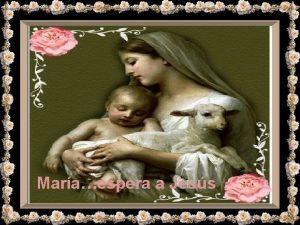 Maraespera a Jess Bendita seas Madre Mara ruega