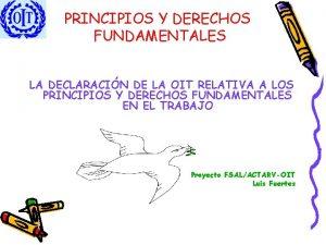 PRINCIPIOS Y DERECHOS FUNDAMENTALES LA DECLARACIN DE LA