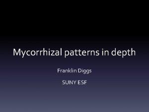 Mycorrhizal patterns in depth Franklin Diggs SUNY ESF
