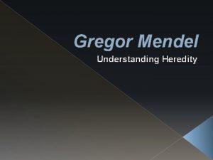 Gregor Mendel Understanding Heredity Objectives Describe how Mendel