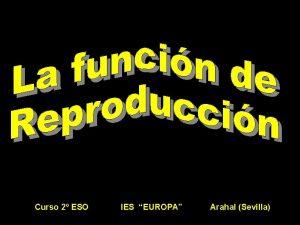 Curso 2 ESO IES EUROPA Arahal Sevilla Curso