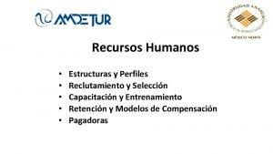 Recursos Humanos Estructuras y Perfiles Reclutamiento y Seleccin
