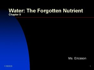 Water The Forgotten Nutrient Chapter 9 Ms Ericsson