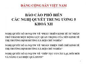 NG CNG SN VIT NAM BO CO PH