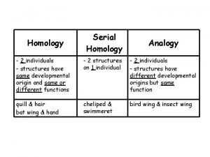 Homology Serial Homology Analogy 2 individuals structures have